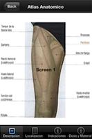 Atlas Anatomico screenshot 3
